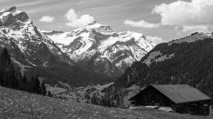 paysage-2_2021-07-06.jpg