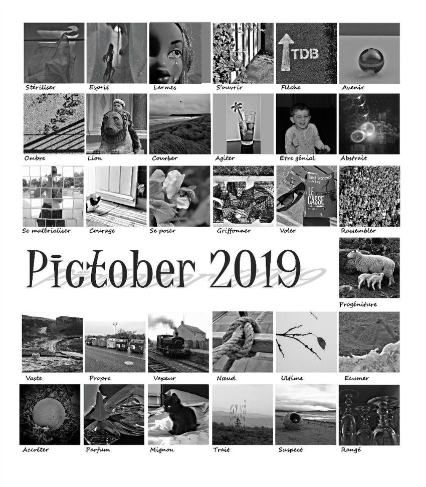 Pictober2019_2019-10-30.jpg
