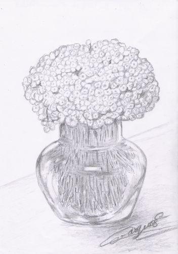 mon-bouquet-d-immortelles.jpg